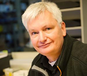 Matthias Irrlicht